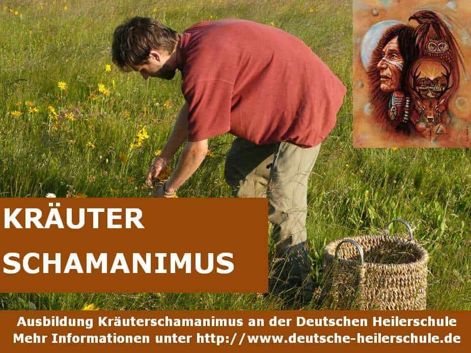Kräuterschamanimus - Ausbildung zum Kräuterschamanen an der Deutschen Heilerschule